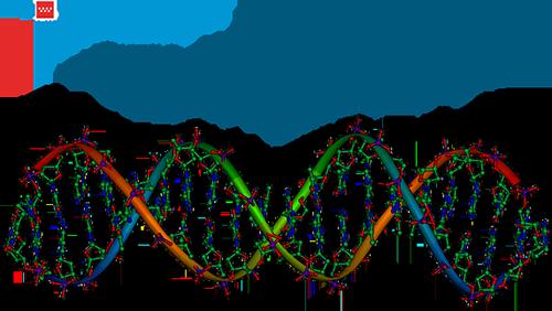 Curso de Genética Básica para Pediatras.